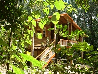 Rivers Edge Rainforest Retreat - Tourism Canberra