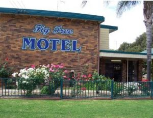 Fig Tree Motel - Tourism Canberra