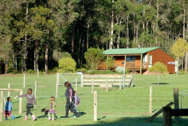 Diamond Forest Farm Stay - Tourism Canberra