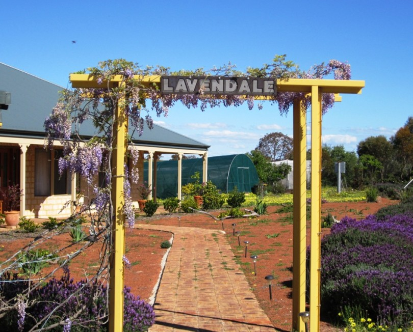 Lavendale Farmstay and Cottages - Tourism Canberra