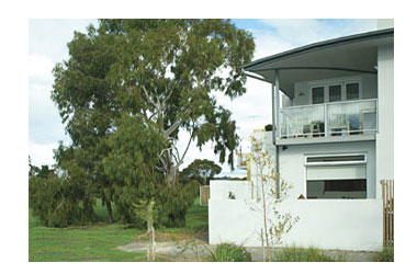ParkSide Stay - Tourism Canberra