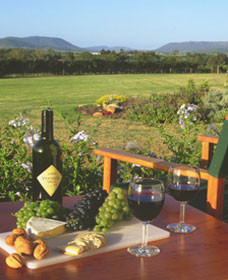 Tranquil Vale Vineyard Cottages - Tourism Canberra