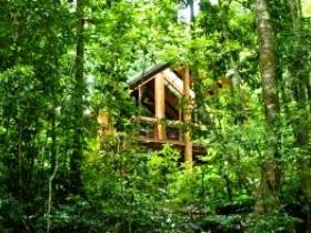 Fur'N'Feathers Rainforest Tree Houses - Tourism Canberra