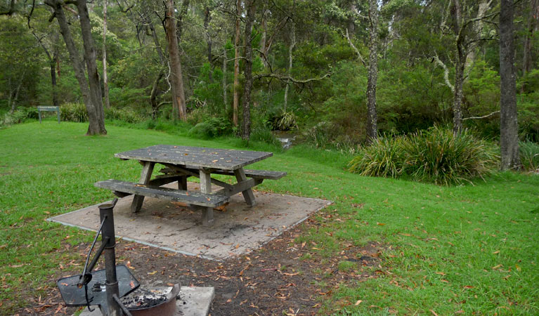 Chaelundi campground - Tourism Canberra