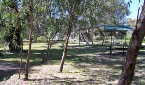 Coach and Horses campground - Tourism Canberra