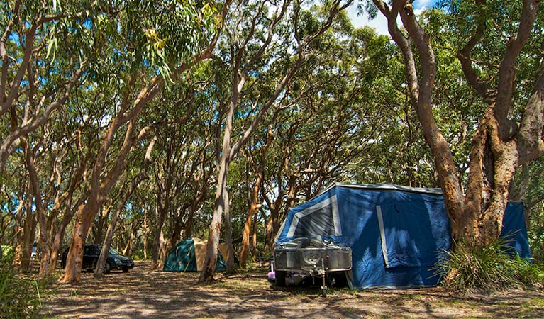 Stewart and Lloyds campground - Tourism Canberra