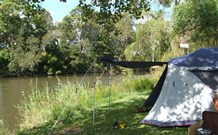 Williams River Holiday Park - Tourism Canberra