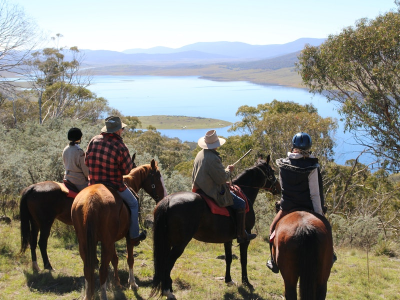 Reynella Homestead and Horseback Rides - Tourism Canberra