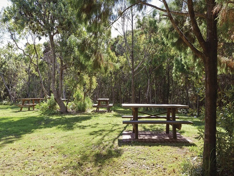 Illaroo group camping area - Tourism Canberra