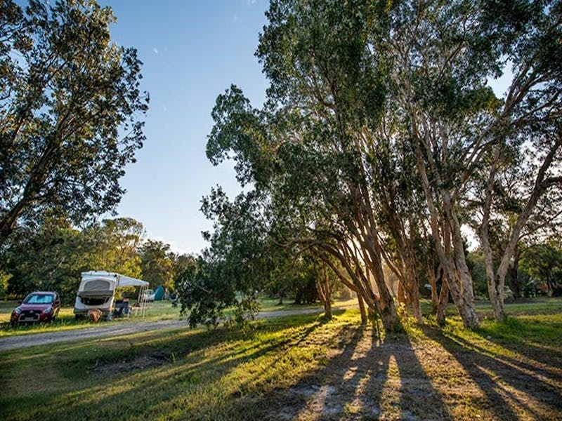 Delicate campground - Tourism Canberra