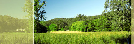Waterholes Guest House - Tourism Canberra