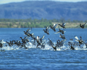 Ord River - Tourism Canberra