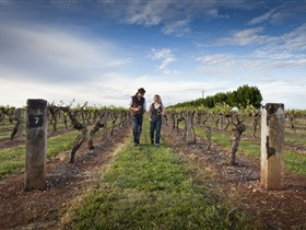 Coonawarra Wineries Walking Trail - Tourism Canberra