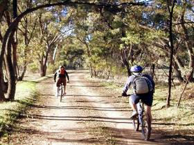 Bike About Mountain Bike Tours And Hire - Tourism Canberra
