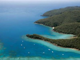 Butterfly Bay - Hook Island - Tourism Canberra