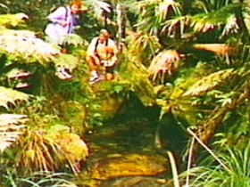 The Tombs Circuit