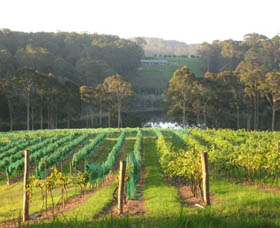 Tilba Valley Wines - Tourism Canberra