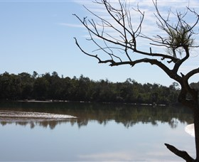 North Coast Holiday Parks Boambee Creek Reserve - Tourism Canberra