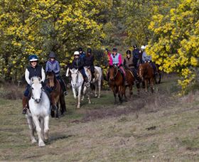 Burnelee Excursions on Horseback - Tourism Canberra