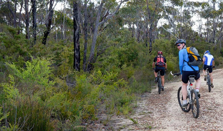 McMahon's Point ride - Wentworth Falls - Tourism Canberra