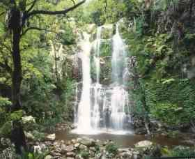 Budderoo National Park - The Falls Walk - Tourism Canberra