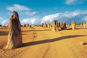 Pinnacles Desert Koalas and Sandboarding 4WD Day Tour from Perth - Tourism Canberra