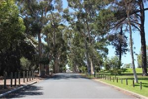 Claremont Heritage Tour from Perth - Tourism Canberra
