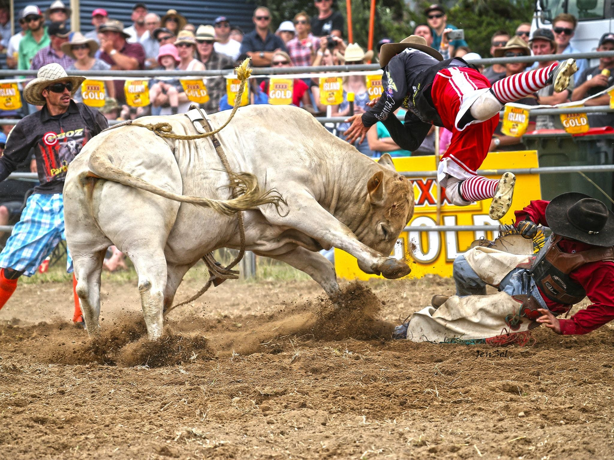 Jindabyne's Man From Snowy River Rodeo - Tourism Canberra