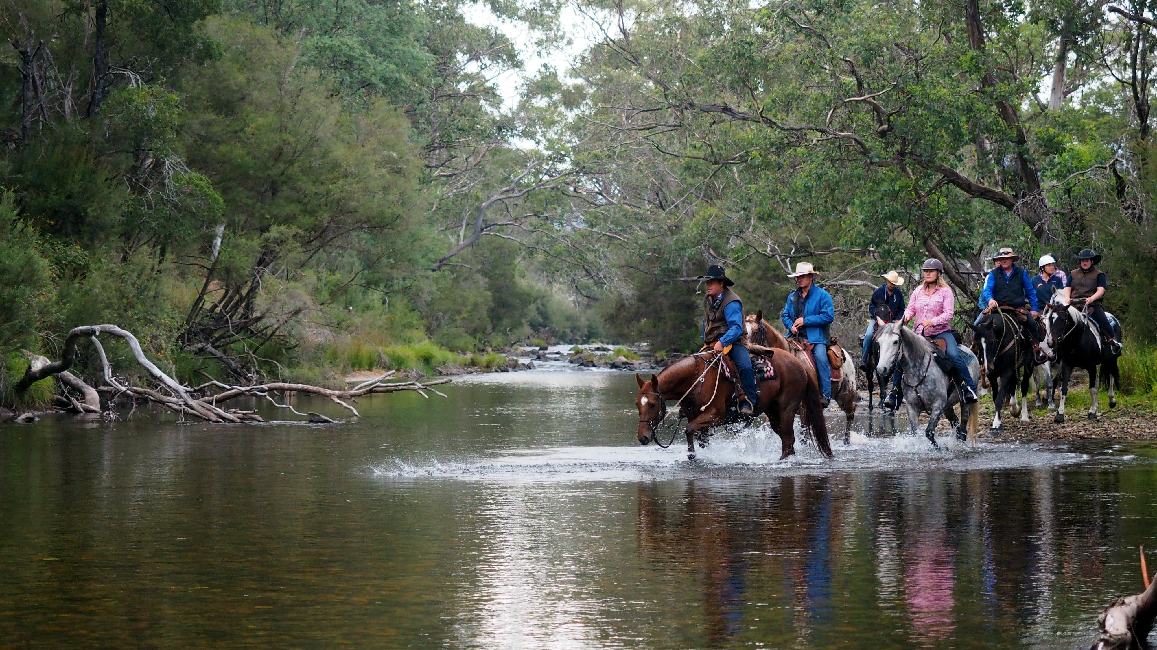 The Man From Snowy River Bush Festival - Tourism Canberra