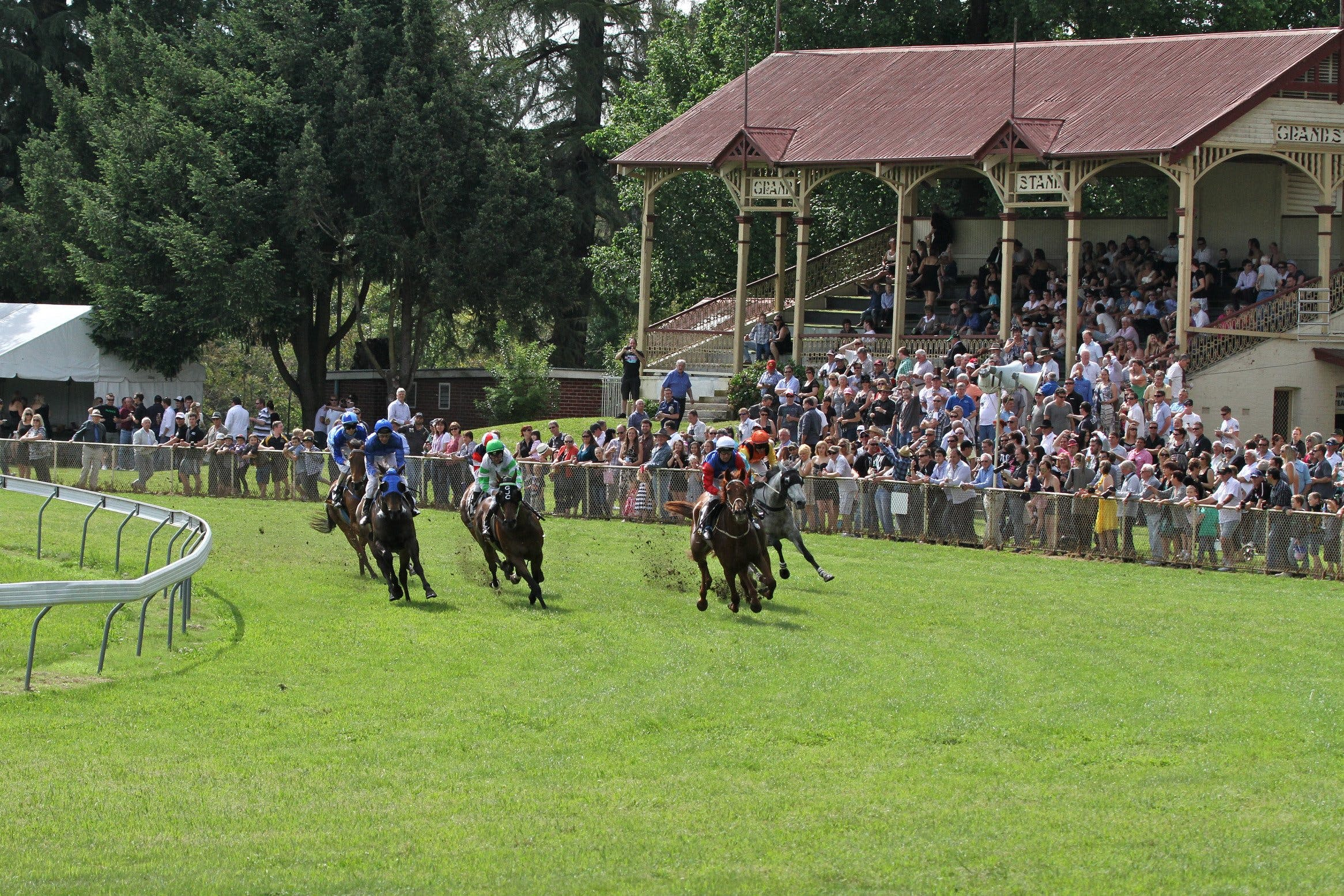 Tumut Boxing Day Races - Tourism Canberra