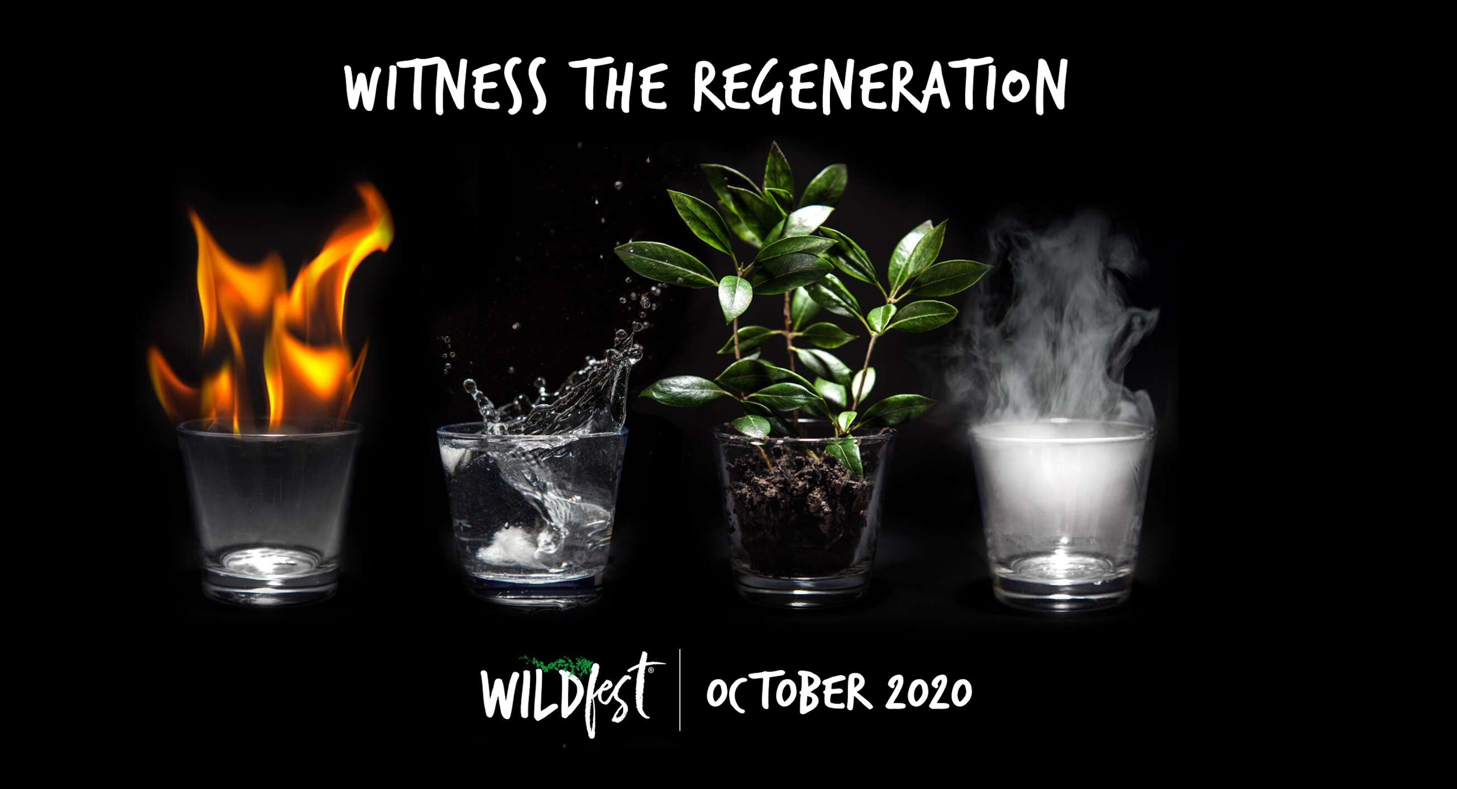 Wildfest - Annual Festival - Tourism Canberra