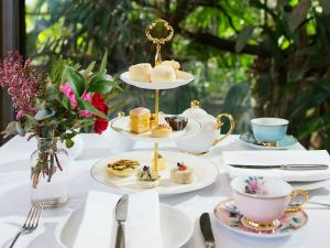 High Tea at Melbourne Zoo - Tourism Canberra