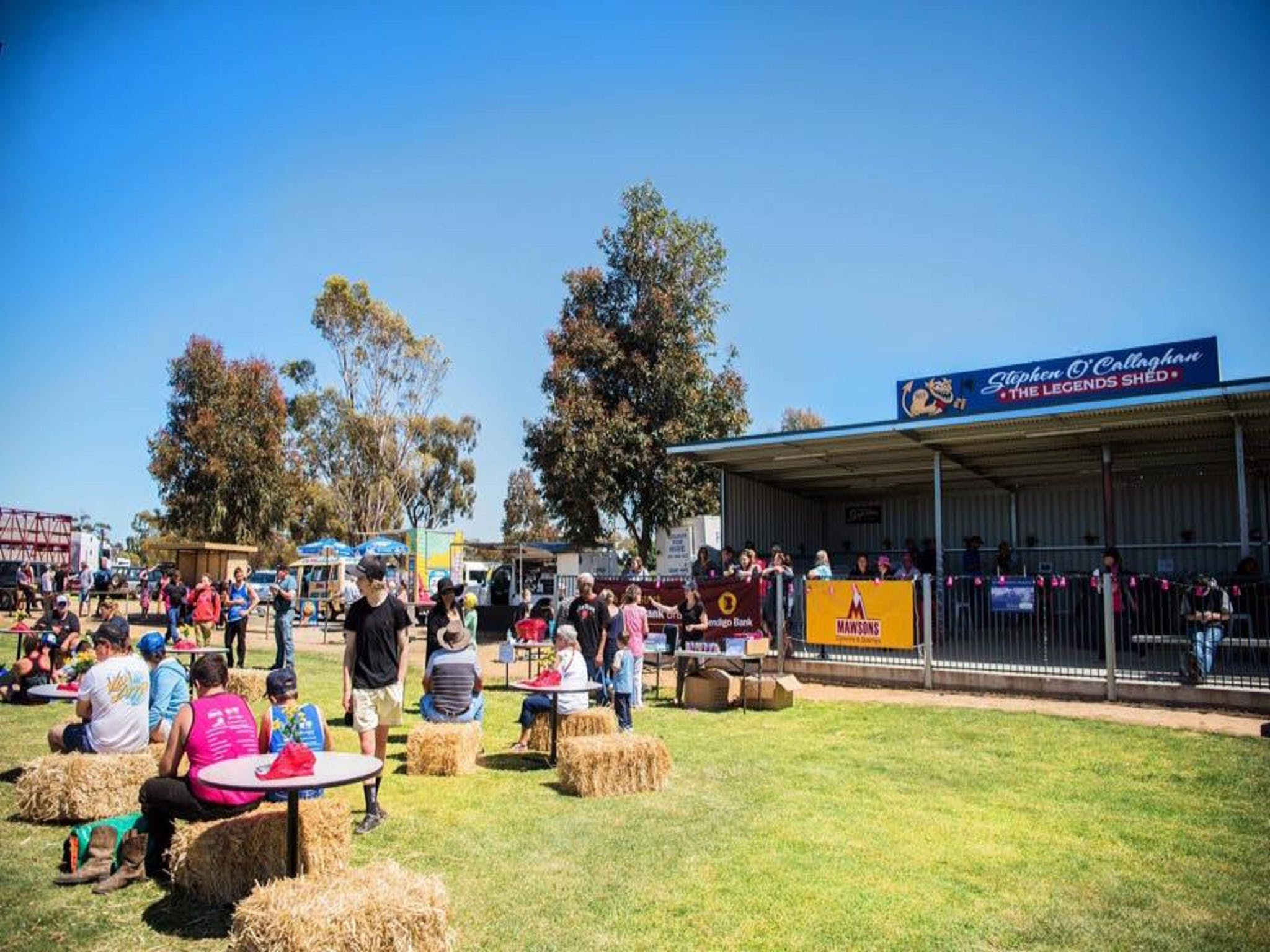 Mathoura Speed Shear and Annual Cancer Fundraiser - Tourism Canberra