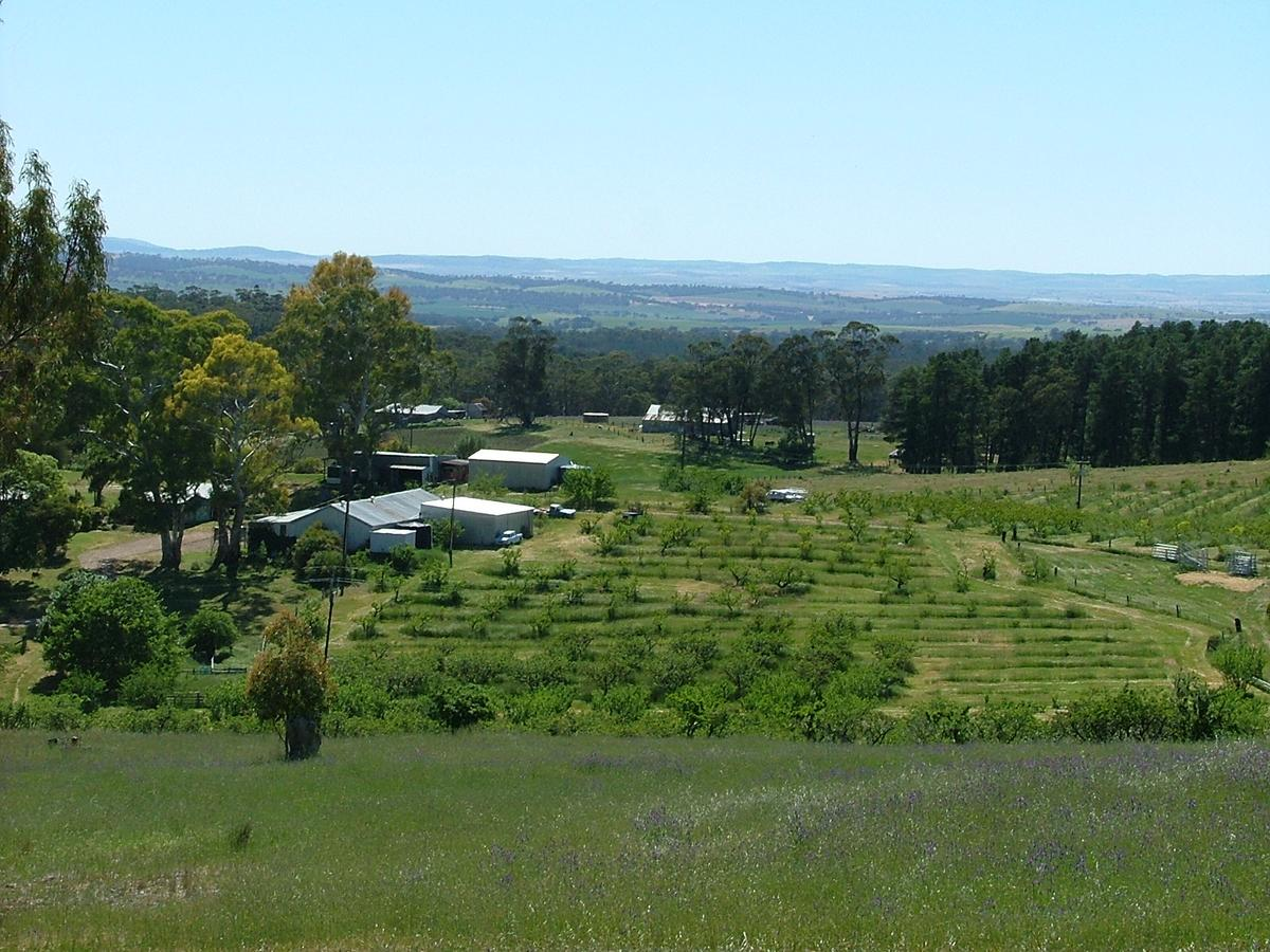 Taralee Orchards - Tourism Canberra