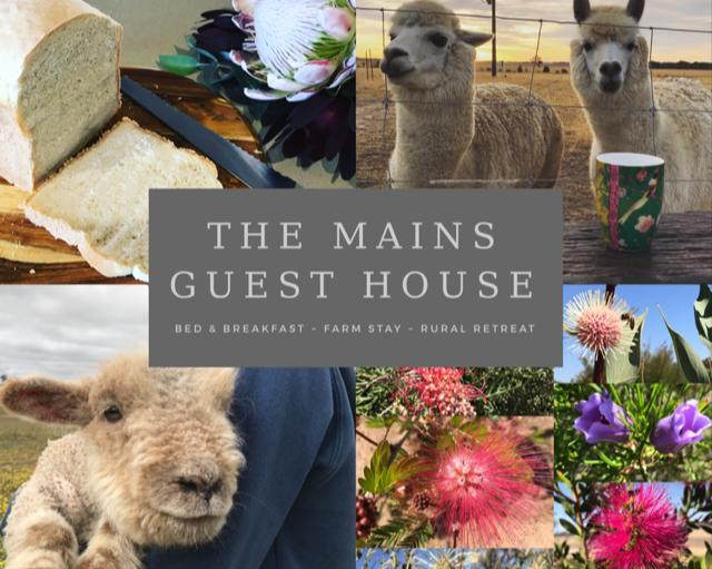 The Mains Guest House - Tourism Canberra